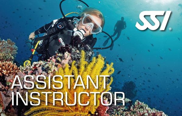 Cours de plongée Niveau 4 Assistant-Instructeur de l'École de plongée Lanaudière