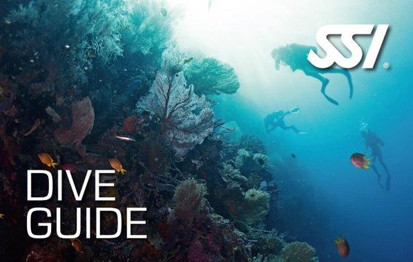 Spécialité Dive Guide de l'École de plongée Lanaudière