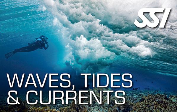 Spécialité Waves, Tides & Currents de l'École de plongée Lanaudière